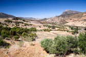Beautiful mountains close to Zahara in Spain — Stock Photo