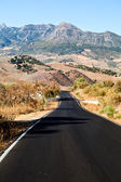 Asphalt road to Andalusian mountains — Stock Photo