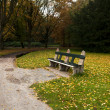 Cozy bench in autumn park — Stock Photo