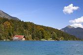 Forêt de lac et automne walchensee — Photo