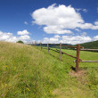 Stock Photo: Wooden fence on green summer pastoral