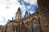Vrijthof,圣慈善大教堂 — 图库照片