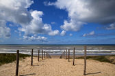 Path to the beach on North Sea in Zandvoort aan Zee — Stock Photo