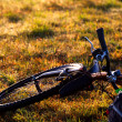 Mountain bicycle on grass — Foto Stock