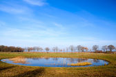 Round shaped little pond — Stockfoto