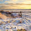 Dutch fields in snow — Foto Stock