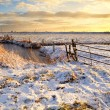 Dutch fields in snow — Stok fotoğraf