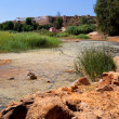 River Tinto in Niebl(Huelva) — Stock Photo #18408313