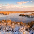 Sunrise over swamp in winter — Stock Photo