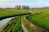 Fiume in campi olandesi — Foto Stock