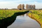 Canal by Dutch farm house — Stock Photo