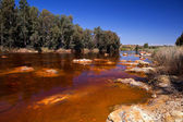 River Tinto by Niebla (Huelva) — Stock Photo