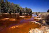 River Tinto by Niebla (Huelva) — Stock Photo