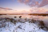Sunrise over frozen lake — Stock Photo