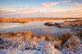 Sunrise over swamp in winter — Stock Photo