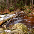 Stock Photo: Fast mountain river in Harz