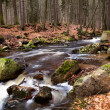 Stock Photo: Fast river in Harz mountains