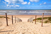 Path to sandy beach by North sea — Stock Photo