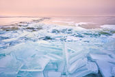 Broken shelf ice pieces at sunset on North sea — Stock Photo