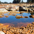 Acidic river Tinto in Niebla (Huelva) — Stock Photo