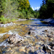 Fresh mountain river — Stock Photo #23312226