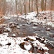 mountain river in winter harz — Stock Photo