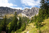 Bavarian Alps in summer — Stock Photo