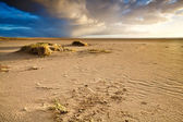Sand beach by North sea in Netherlands — Stock Photo