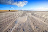 Wind on sand beach in Ijmuiden, Holland — Stock Photo