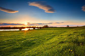 Sunset over flowering meadows — Stock Photo