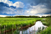 Beautiful cloudscape over river — Stock Photo