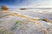 Sand beach on North sea and blue sky — Stock Photo