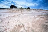 Gloomy landscape on sand dunes — Stock Photo