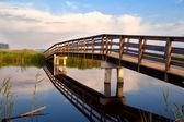 Wooden bridge over river — Stock Photo