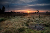 Summer sunrise over meadows — Stock Photo