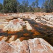 Stock Photo: Orange stones in rio Tinto