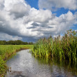 Dramatic stormy sky over river — Stock Photo #31417129