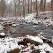 Mountain river in winter forest — Foto Stock