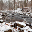 Mountain river in winter forest — Stock Photo #31418493