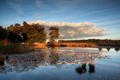 Zachód słońca nad dzikie jezioro z liliami wodnymi — Zdjęcie stockowe