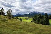 Green alpine meadows in Bavaria — Stock Photo