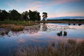 Solnedgång över vilda sjö — Stockfoto