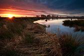 Promienie słońca wschód słońca nad bagno jesienią — Zdjęcie stockowe