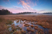 Beautiful autumn sunrise over marsh — Stock Photo