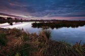 Beautiful sunrise over swamp — Foto Stock