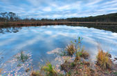 Sky reflected in little lake — Foto Stock