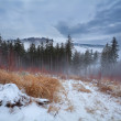 Fog in winter Harz mountains — Stock Photo #39107587