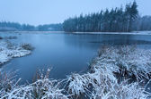 Cold winter morning over wild lake — Stok fotoğraf