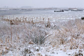 Lago congelado no inverno — Foto Stock