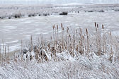 Frozen river in winter — Stock Photo